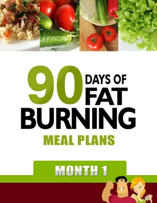 90 day meal plans