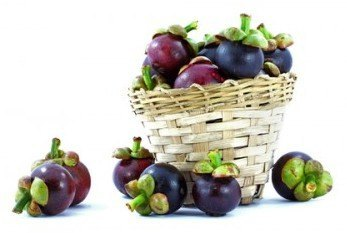 picture-of-mangosteen-fruit