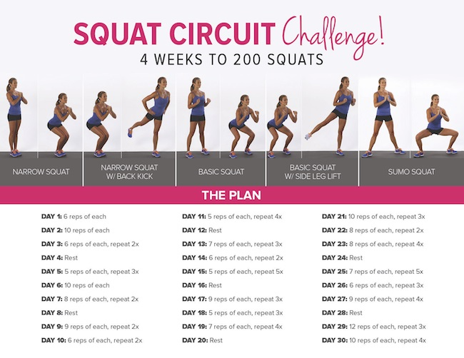 [ULTIMATE] Companion to 30 Day Squat Challenge + Tips (Jan ...