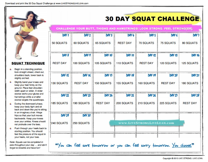 ULTIMATE] Companion to 30 Day Squat Challenge + Tips (Jan. 2017)