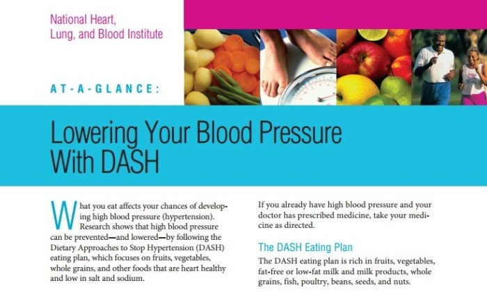 pdf-handout-for-the-diet-lowering-hypertension