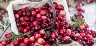 Fresh Red Cranberries on Table